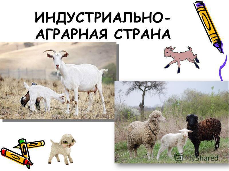 ИНДУСТРИАЛЬНО- АГРАРНАЯ СТРАНА