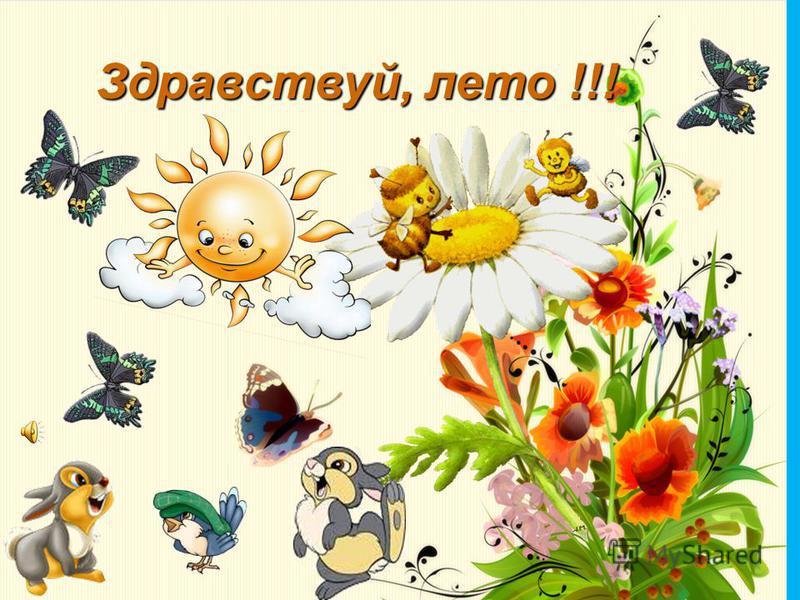 Здравствуй, лето !!!