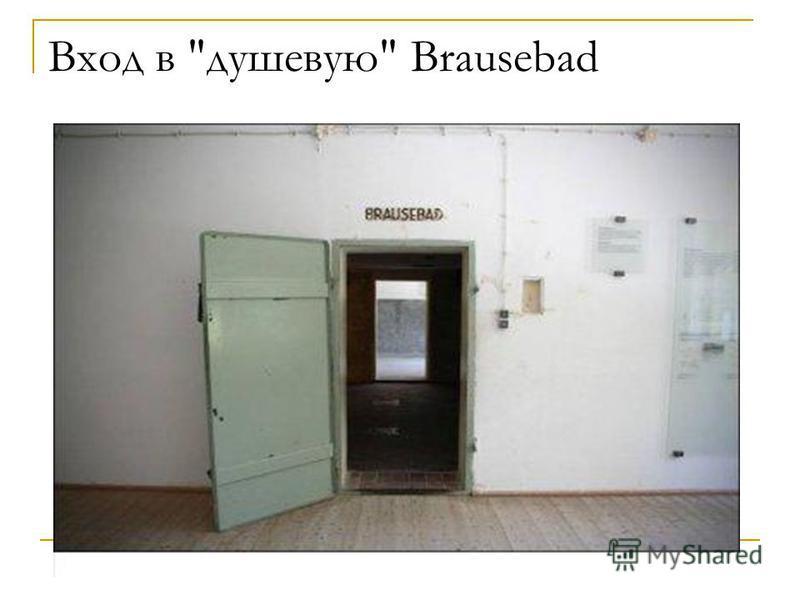 Вход в душевую Brausebad
