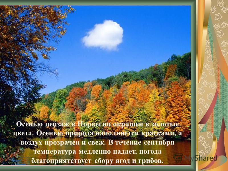 Осенью пейзаж в Норвегии окрашен в золотые цвета. Осенью природа наполняется красками, а воздух прозрачен и свеж. В течение сентября температура медленно падает, погода благоприятствует сбору ягод и грибов.