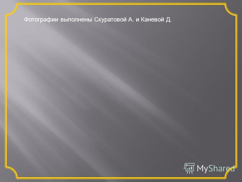 Фотографии выполнены Скуратовой А. и Каневой Д.