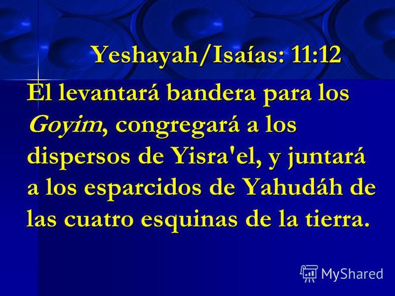 Yeshayah/Isaías: 11:12 El levantará bandera para los Goyim, congregará a los dispersos de Yisra'el, y juntará a los esparcidos de Yahudáh de las cuatro esquinas de la tierra.