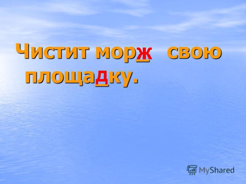 Чистит мор_ свою проща_ку.