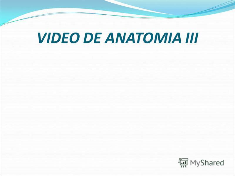 VIDEO DE ANATOMIA II