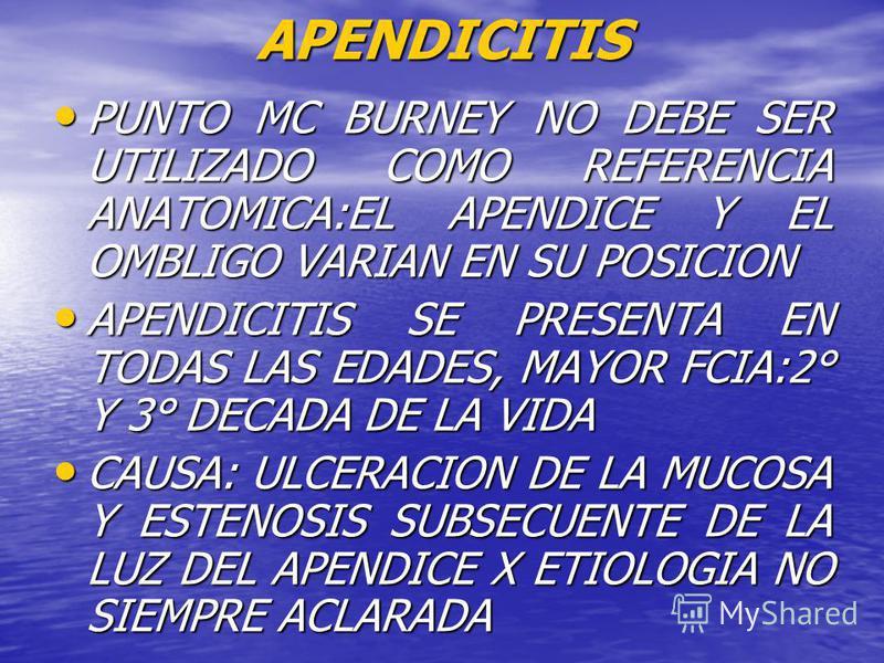 PUNTO MC BURNEY