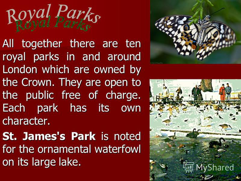 All together there are ten royal parks in and around London which are owned by the Crown. They are open to the public free of charge. Each park has its own character. St. James's Park is noted for the ornamental waterfowl on its large lake.
