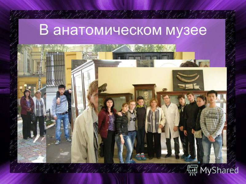 В анатомическом музее