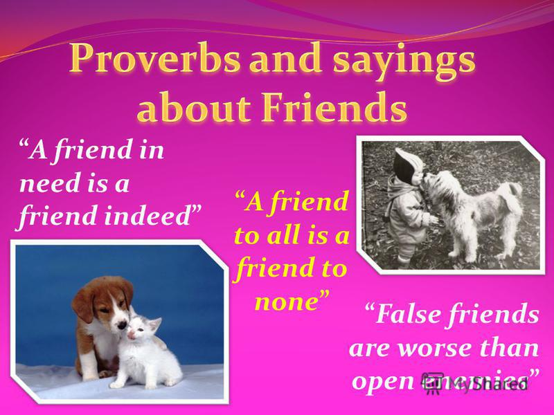 A friend to all is a friend to none A friend in need is a friend indeed False friends are worse than open enemies