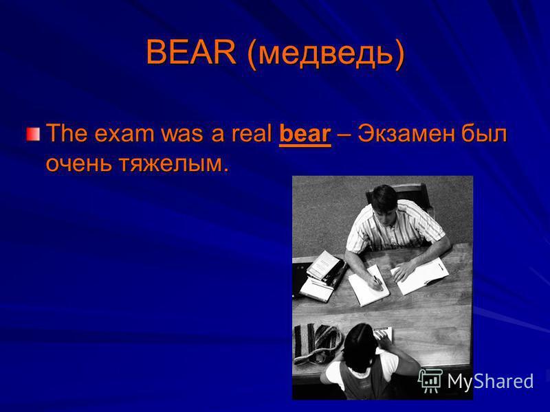 BEAR (медведь) The exam was a real bear – Экзамен был очень тяжелым.