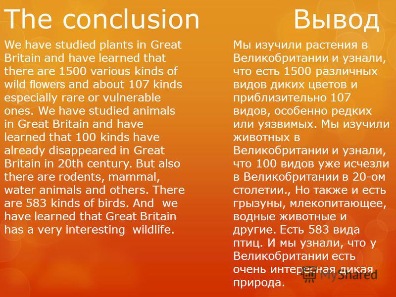 The conclusion Вывод We have studied plants in Great Britain and have learned that there are 1500 various kinds of wild flowers and about 107 kinds especially rare or vulnerable ones. We have studied animals in Great Britain and have learned that 100