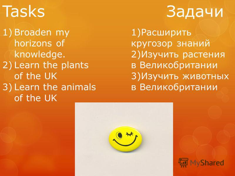 Tasks Задачи 1)Broaden my horizons of knowledge. 2)Learn the plants of the UK 3)Learn the animals of the UK 1)Расширить кругозор знаний 2)Изучить растения в Великобритании 3)Изучить животных в Великобритании