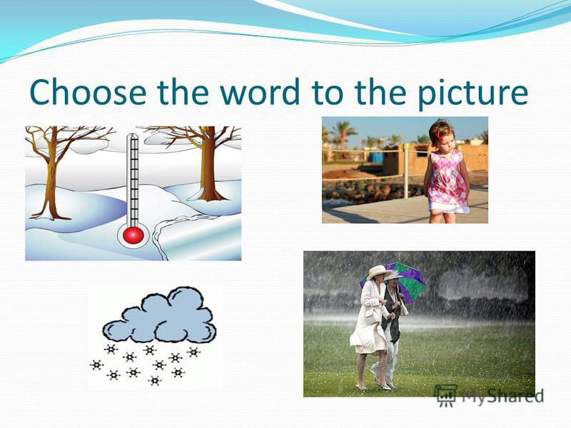 Choose the word to the picture