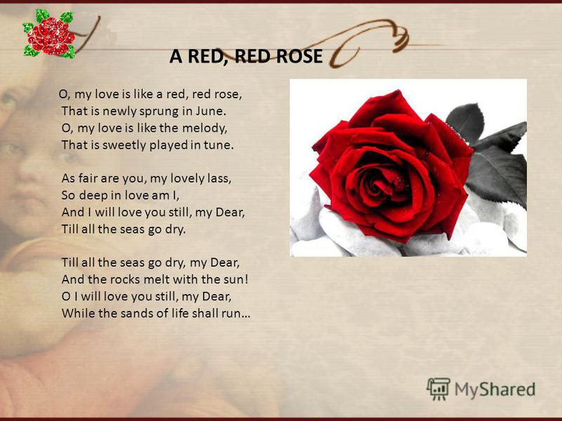 O, my love is like a red, red rose, That is newly sprung in June. O, my love is like the melody, That is sweetly played in tune. As fair are you, my lovely lass, So deep in love am I, And I will love you still, my Dear, Till all the seas go dry. Till