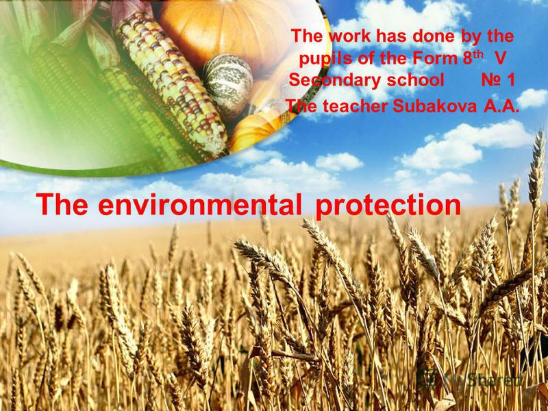 The environmental protection The work has done by the pupils of the Form 8 th V Secondary school 1 The teacher Subakova A.A.