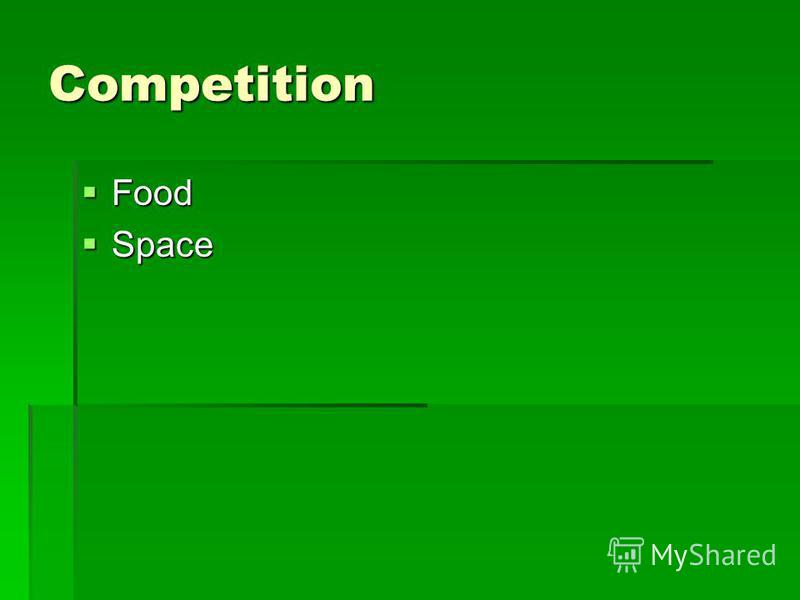 Competition Food Food Space Space