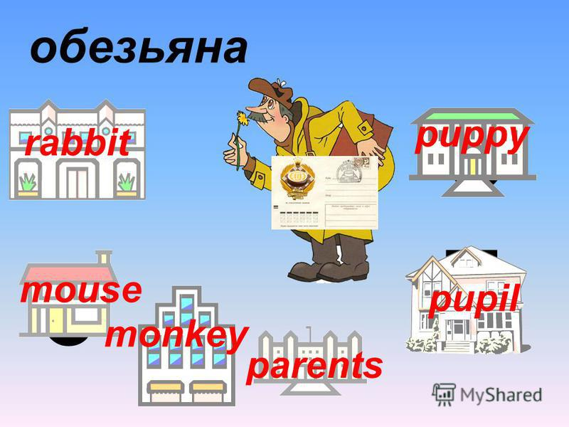 3 6 9 parents 7 5 обезьяна rabbit mouse monkey pupil puppy