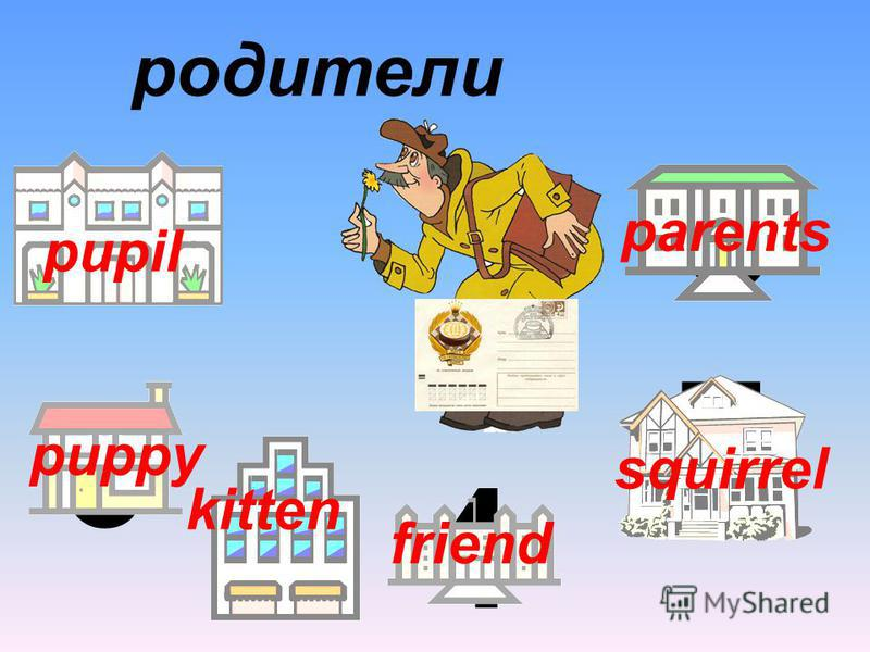 3 6 94 7 5 родители pupil puppy kitten friend squirrel parents