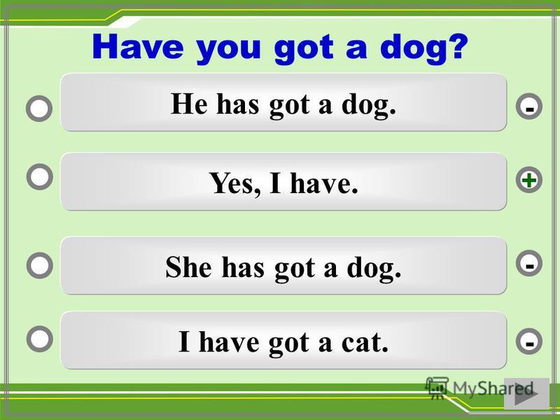 Yes, I have. She has got a dog. I have got a cat. He has got a dog. - - + - Have you got a dog?