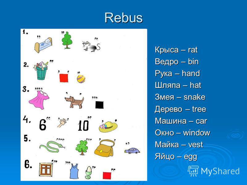 Rebus Крыса – rat Ведро – bin Рука – hand Шляпа – hat Змея – snake Дерево – tree Машина – car Окно – window Майка – vest Яйцо – egg