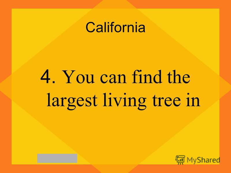 California 4. You can find the largest living tree in