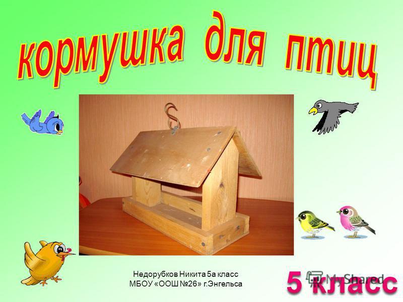 Недорубков Никита 5 а класс МБОУ «ООШ 26» г.Энгельса