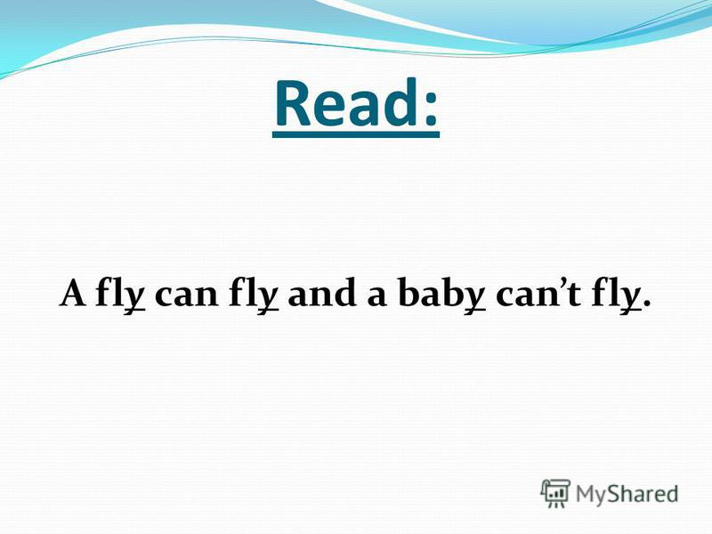 Read: A fly can fly and a baby cant fly.