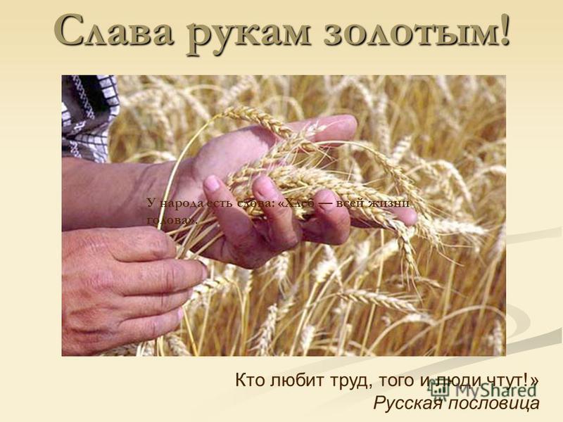 Библиотечный урок. Слава рукам золотым! Кто любит труд, того и люди чтут!» Русская пословица У народа есть слова: «Хлеб всей жизни голова».