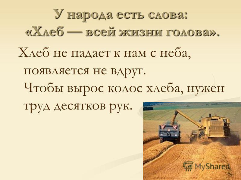 Хлеб не падает к нам с неба, появляется не вдруг. Чтобы вырос колос хлеба, нужен труд десятков рук.