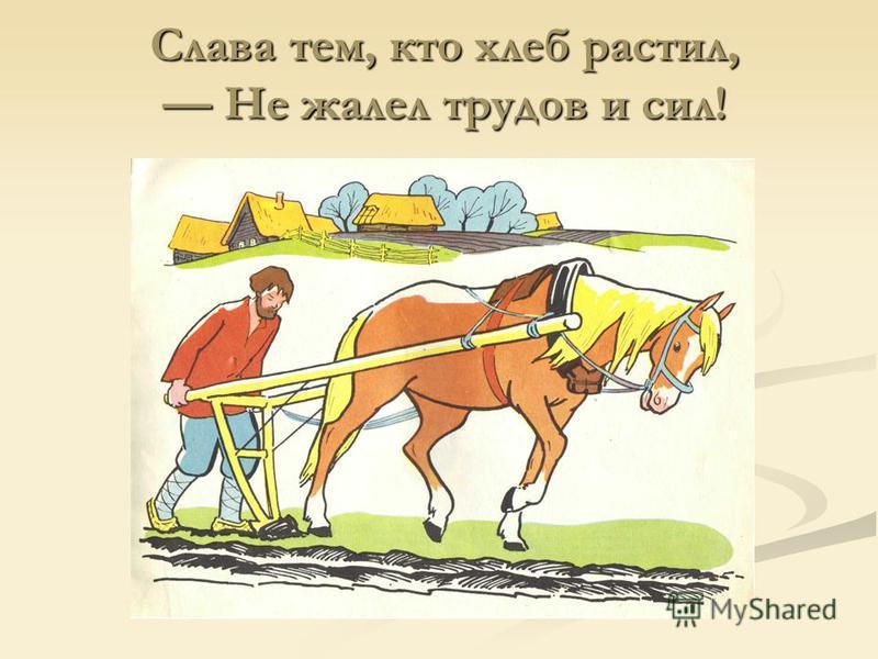 Слава тем, кто хлеб растил, Не жалел трудов и сил! Слава тем, кто хлеб растил, Не жалел трудов и сил!