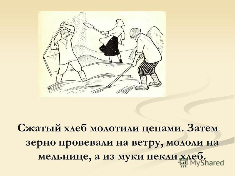 Сжатый хлеб молотили цепами. Затем зерно провевали на ветру, мололи на мельнице, а из муки пекли хлеб.