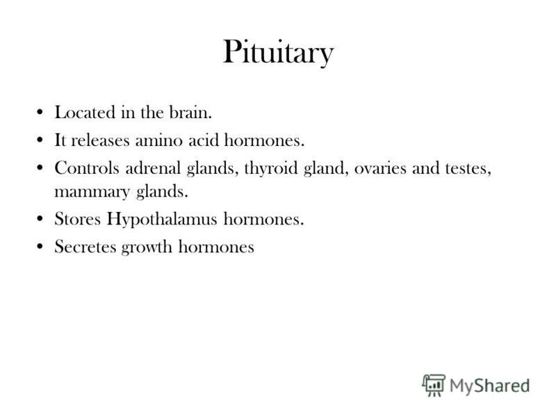 Pituitary Located in the brain. It releases amino acid hormones. Controls adrenal glands, thyroid gland, ovaries and testes, mammary glands. Stores Hypothalamus hormones. Secretes growth hormones