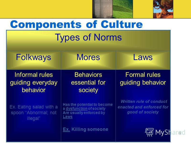 21 Components of Culture Norms Shared rules of conduct that tell people how to act in specific situations Behavioral boundaries regulating social interactions Norms are expectations, not actual behavior – doesnt mean that actions of all individuals w