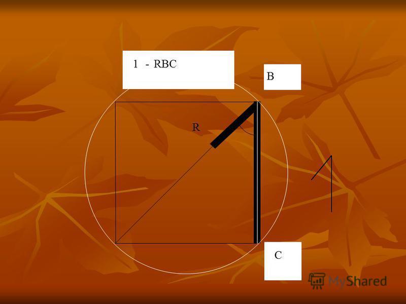 R B C 1- RBC