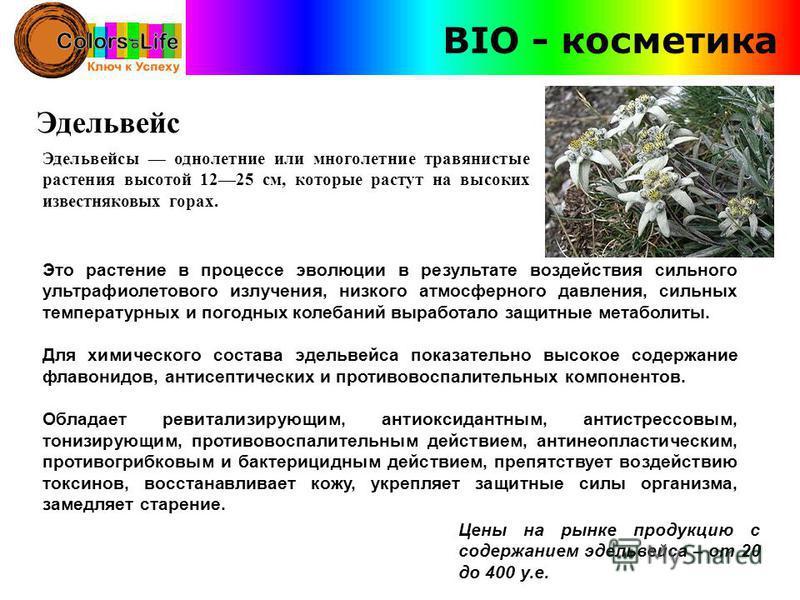 Эдельвейс Эдельвейсы однолетние или многолетние травянистые растения высотой 1225 см, которые растут на высоких известняковых горах. Это растение в процессе эволюции в результате воздействия сильного ультрафиолетового излучения, низкого атмосферного