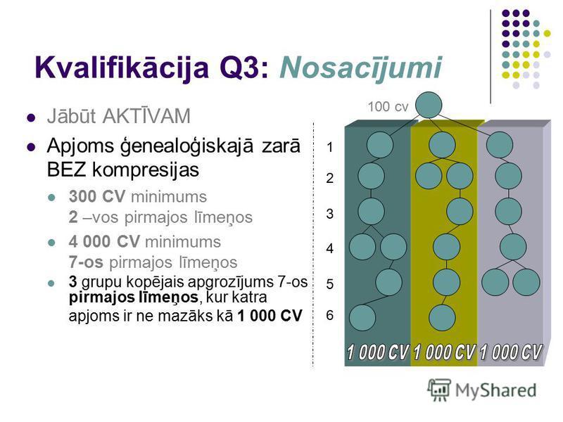 Kvalifikācija Q3: Nosacījumi Jābūt AKTĪVAM Apjoms ģenealoģiskajā zarā BEZ kompresijas 300 CV minimums 2 –vos pirmajos līmeņos 4 000 CV minimums 7-os pirmajos līmeņos 3 grupu kopējais apgrozījums 7-os pirmajos līmeņos, kur katra apjoms ir ne mazāks kā