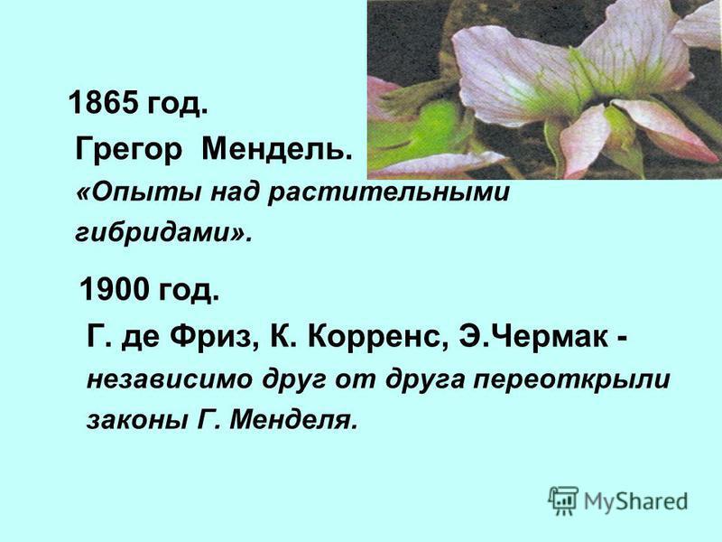 1865 год. Грегор Мендель. «Опыты над растительными гибридами». 1900 год. Г. де Фриз, К. Корренс, Э.Чермак - независимо друг от друга переоткрыли законы Г. Менделя.