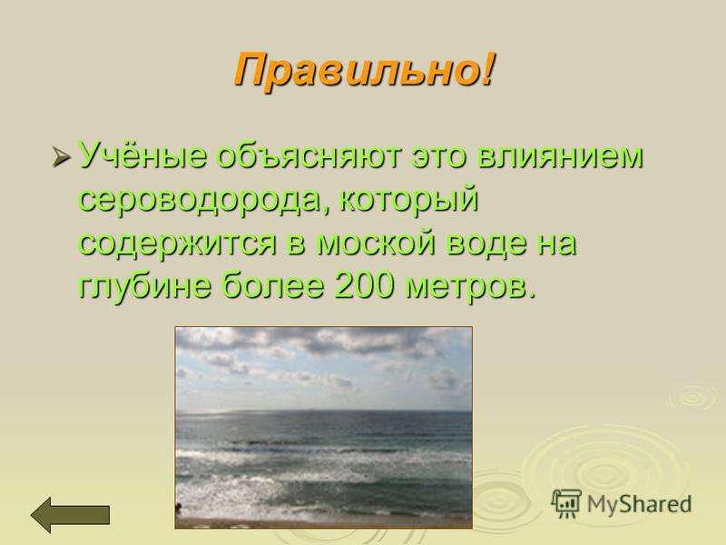 Учёные объясняют это влиянием сероводорода, который содержится в морской воде на глубине более 200 метров. Учёные объясняют это влиянием сероводорода, который содержится в морской воде на глубине более 200 метров. Правильно!