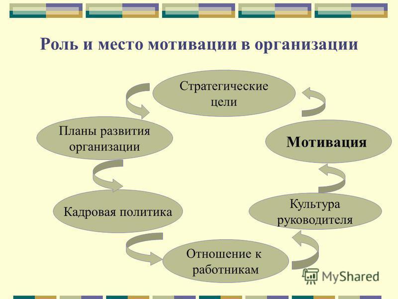 Роль и место мотивации в организации Стратегические цели Планы развития организации Кадровая политика Отношение к работникам Культура руководителя Мотивация