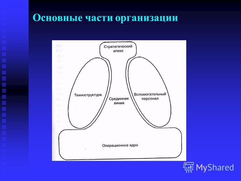 Основные части организации