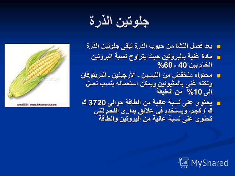 جلوتين الذرة بعد فصل النشا من حبوب الذرة تبقى جلوتين الذرة بعد فصل النشا من حبوب الذرة تبقى جلوتين الذرة مادة غنية بالبروتين حيث يتراوح نسبة البروتين الخام بين 40 ـ 60% مادة غنية بالبروتين حيث يتراوح نسبة البروتين الخام بين 40 ـ 60% محتواه منخفض من ا