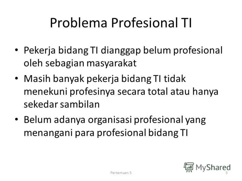 Problema Profesional TI Pekerja bidang TI dianggap belum profesional oleh sebagian masyarakat Masih banyak pekerja bidang TI tidak menekuni profesinya secara total atau hanya sekedar sambilan Belum adanya organisasi profesional yang menangani para pr