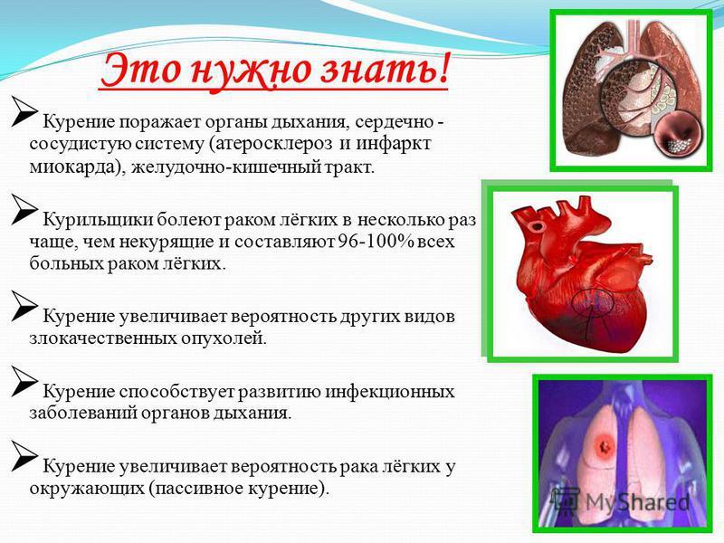 Это нужно знать! Курение поражает органы дыхания, сердечно - сосудистую систему ( ), желудочно-кишечный тракт. Курение поражает органы дыхания, сердечно - сосудистую систему ( атеросклероз и инфаркт миокарда ), желудочно-кишечный тракт. Курильщики бо