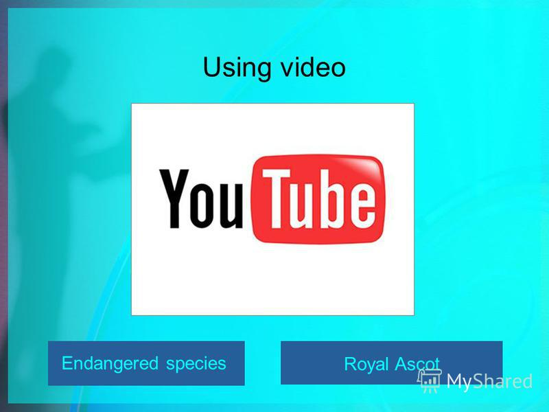Using video Endangered species Royal Ascot