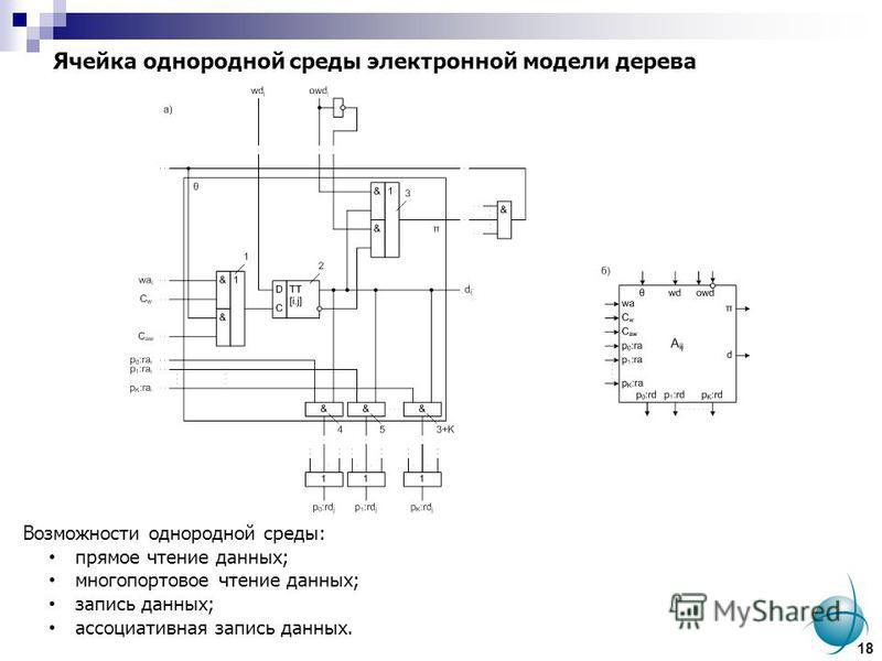 Ячейка однородной среды электронной модели дерева Возможности однородной среды: прямое чтение данных; многопортовое чтение данных; запись данных; ассоциативная запись данных. 18