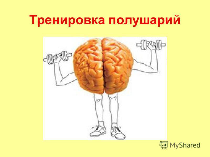 Тренировка полушарий