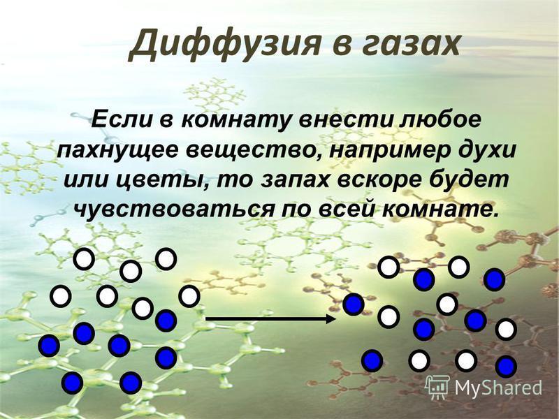 Диффузия в газах Если в комнату внести любое пахнущее вещество, например духи или цветы, то запах вскоре будет чувствоваться по всей комнате.