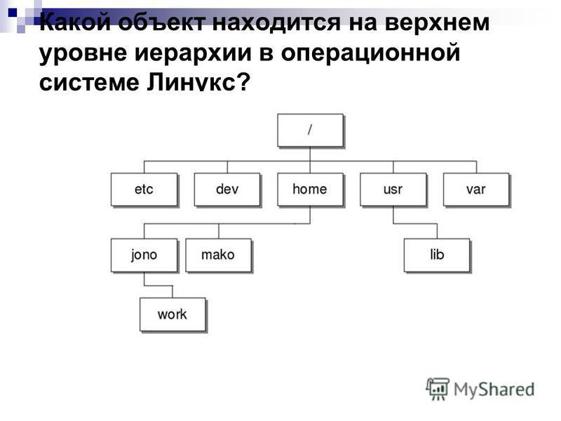 Какой объект находится на верхнем уровне иерархии в операционной системе Линукс?