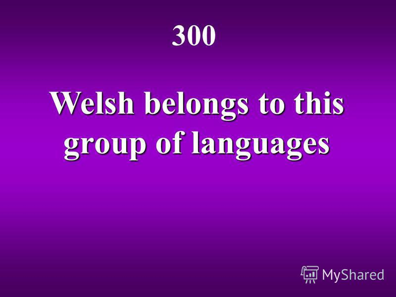 Welsh belongs to this group of languages 300