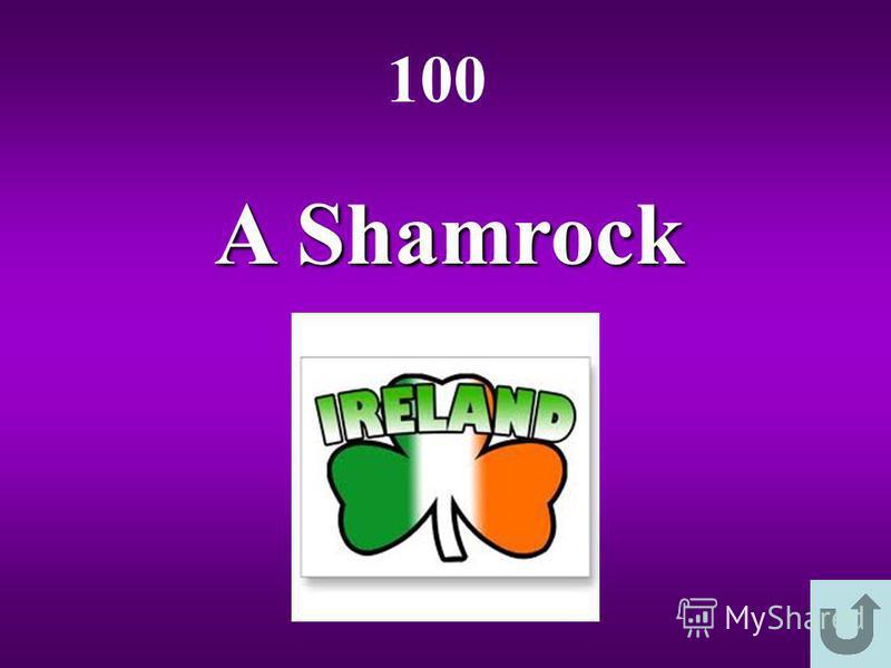 A Shamrock 100