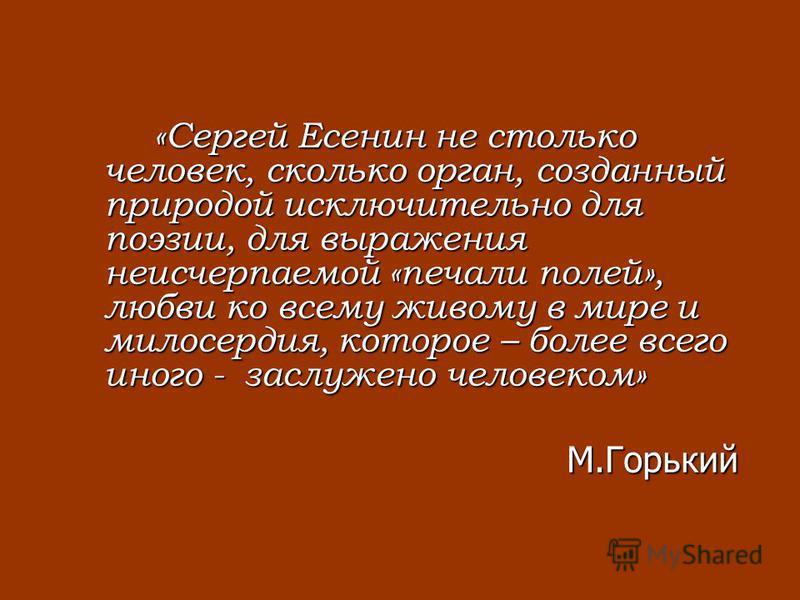 «Сергей Есенин не столько человек, сколько орган, созданный природой исключительно для поэзии, для выражения неисчерпаемой «печали полей», любви ко всему живому в мире и милосердия, которое – более всего иного - заслужено человеком» М.Горький